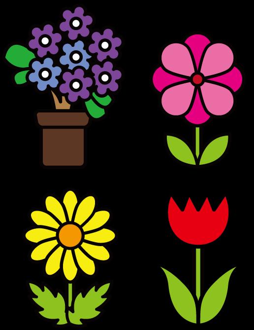 花4種類のイラスト(色アリ) 無料素材 CC0 「素材ある」